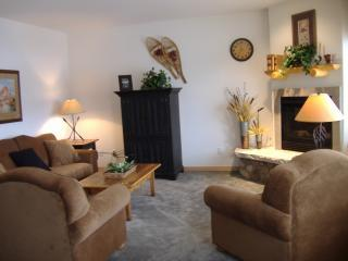 Living Room with gas fireplace - Fantastic Mountain Views from Private Hot Tub! - Breckenridge - rentals