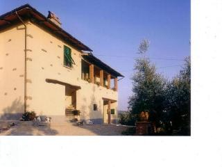 Podere Zollaio - holiday in the heart of  Tuscany - Vinci vacation rentals