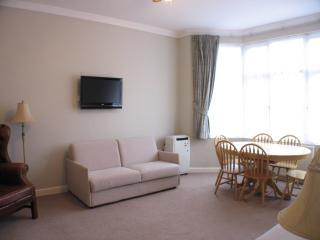 Picture 015 - Luxury Apartment with AC and Wifi - London - rentals
