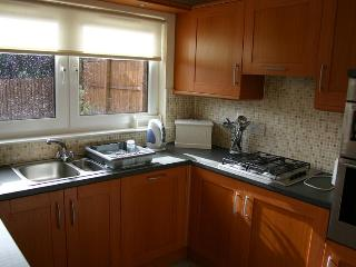 Comfortable House with Internet Access and Dishwasher - Motherwell vacation rentals