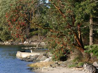 Marina View on Orcas Island - Deer Harbor vacation rentals