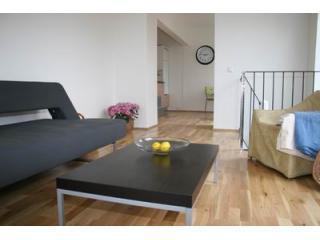 V27-livingroom - Cosy house in city center - Reykjavik - rentals