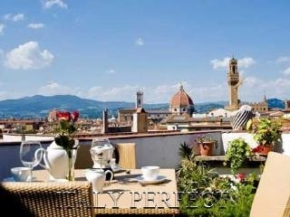 Perfect Views-Terraces-Amore Apartment - Florence vacation rentals
