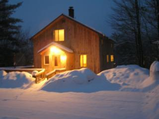 Beautiful Cabin Sleeps 10 Near Ragged Mountain - Alexandria vacation rentals