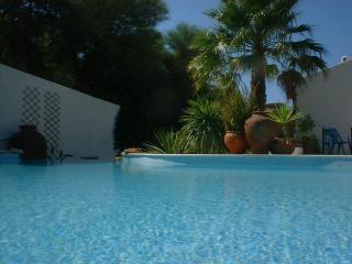CASA LIMAO, beautiful apartment with pool. - Carvoeiro vacation rentals