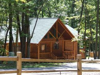 DOGWOOD RETREAT - North Georgia Mountains vacation rentals