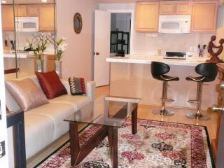 Beautiful 1 bedroom House in Marina del Rey - Marina del Rey vacation rentals