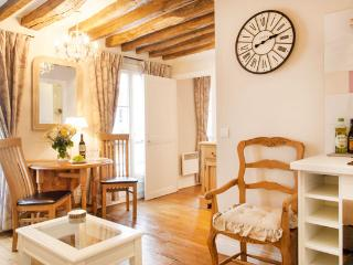BASTILLE Bright Cute and Quiet FREE SEINE CRUISE ! - Paris vacation rentals