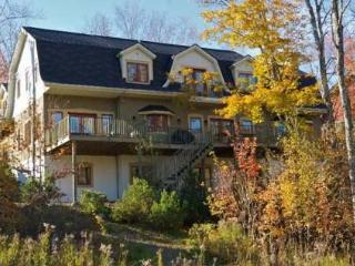 Million Dollar Home on Mont Tremblant Resort - Mont Tremblant vacation rentals
