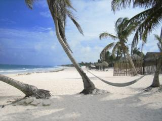 BEAUTIFUL condo in BEST neighborhood by Beach!!! - Playa del Carmen vacation rentals
