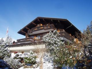 Superbly located Ski Chalet with wonderful views. - Bernese Oberland vacation rentals