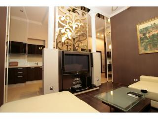VIP 3room/2 bedroom apartment in the heart of Kiev - Kiev vacation rentals