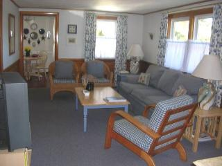 Bright House with Deck and Internet Access - Dennis Port vacation rentals