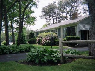 Comfortable House with Deck and Internet Access - Dennis Port vacation rentals