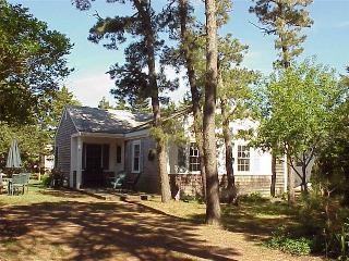 Pine St 22 - Dennis Port vacation rentals