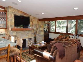 FaschHs5 - Aspen vacation rentals