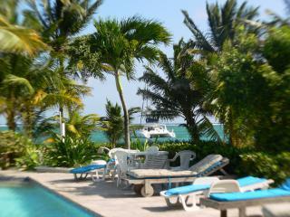 Pool, Ocean & Reef in the background - Paradise Villas Beachfront Condos - San Pedro - rentals