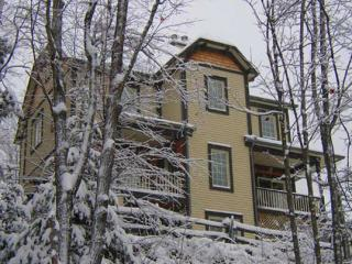 The All Seasons Tremblant - All Seasons Tremblant - Mont Tremblant - rentals
