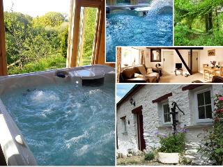Blaenfforest Granary - Holiday Cottages Wales - Newcastle Emlyn vacation rentals