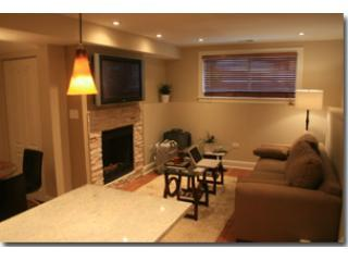 2 bedroom 2 bath Condo - Chicago vacation rentals