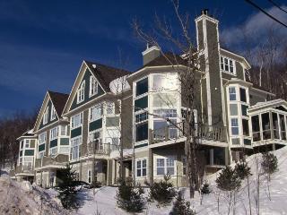 Super 4 BR-4 BA House in Mont Tremblant (Boise | 160-5) - Mont Tremblant vacation rentals