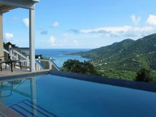 Blue Palm Villa - 3 bed/3 bath, views, pool. - Coral Bay vacation rentals
