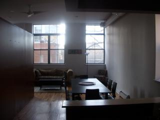 Southern Exposure - XL Windows - Huge SpaHa Loft Sleeps 8 - New York City - rentals