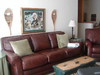 TR502 Pretty Condo w/Wifi, Clubhouse, Mountain Views, Fireplace - Silverthorne vacation rentals