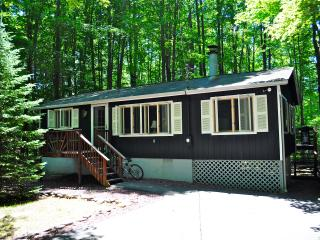 Tranquil Pocono Lake Cottage! Fplc, Fpit, WiFi - Pocono Lake vacation rentals