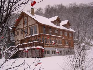 Shinrin Lodge - Niseko-cho vacation rentals