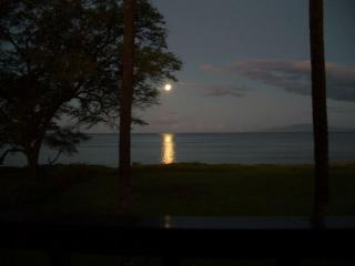 A spectacular moon set, the full moon shines across the water and into the living room. - Honeymoon Beach Condo-Incredible Views!  #227 WBH - Kihei - rentals