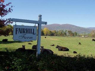 High Fields Farm with stunning mountain views, private pool, hiking, pond,& more - Stanardsville vacation rentals