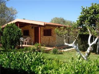 Holiday Homes Rentals Alghero Sardinia - Alghero vacation rentals