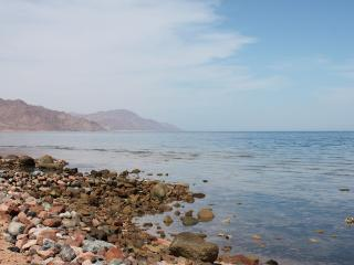 Blue Beach Club Apartment - Dahab vacation rentals