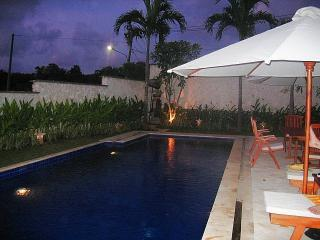 Swimming pool - Tanah at Ulus - Bali - rentals