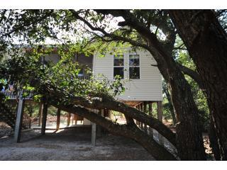 OBX - NC - Secluded Cottage - 4WD Area - Corolla vacation rentals