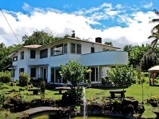 Hilltop Legacy Vacation Rental - Hilo vacation rentals