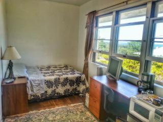 Hilltop Legacy | Hilo Bay Room In Downtown Hilo Bay with Stunning Ocean Views - Hilo vacation rentals