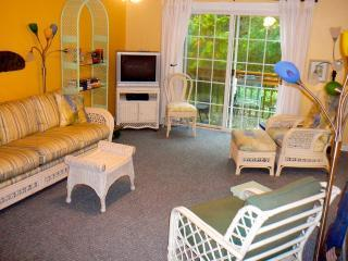 Our bright and cheery Big Room w/sofabed - Avail: 13 Mar-22 April, and then after 3 June... Come on down!  Under live oaks! - Fernandina Beach - rentals