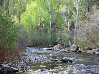 Romantic Cabin with Internet Access and Kettle - Pecos vacation rentals