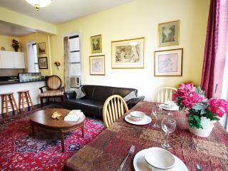 Huge 4 bedroom  mins to Time Sq! (Monthly rental) - New York City vacation rentals
