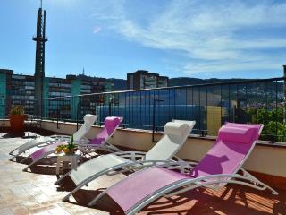 Ferran Batik, amazing 3 BR penthouse in Pedralbes - Barcelona vacation rentals