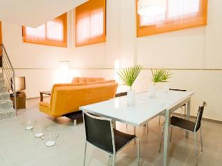 Sants 12 exclusive apts & parking -Fira Duplex C - Cervello vacation rentals