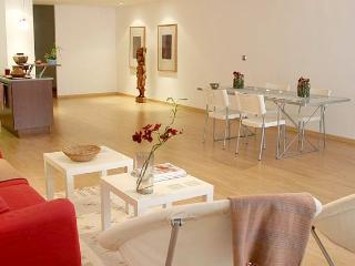 Stylish 100 m2 Loft Casanova in central Eixample - Barcelona vacation rentals