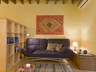 Art Gallery, 2 BR & 2 baths in Eixample - Barcelona vacation rentals
