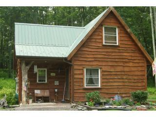 Beautiful Cabin with Deck and A/C - Benton vacation rentals