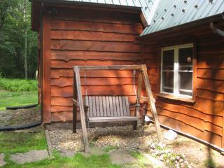 Beautiful Cabin with Deck and Refrigerator - Benton vacation rentals