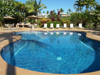 Beautiful Modern Wailea! Remodeled & Affordable - Wailea vacation rentals