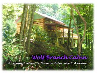 Wolf Branch Cabin 34 miles North of Downtown Asheville - Wolf Branch Cabin, Privacy Abounds near AVL HoTub - Asheville - rentals