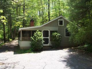Private 2BR Cabin on Mountain Stream-Screen Porch - Wintergreen vacation rentals